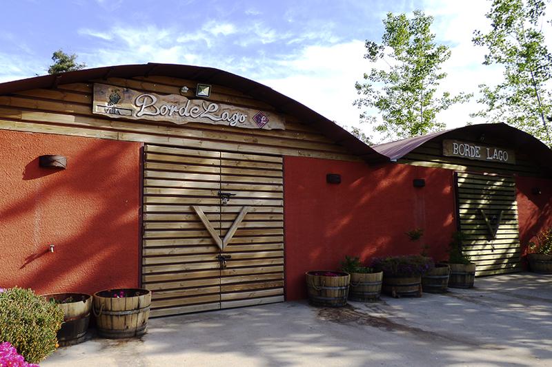 Fotografía de Tour en Vinos Borde Lago