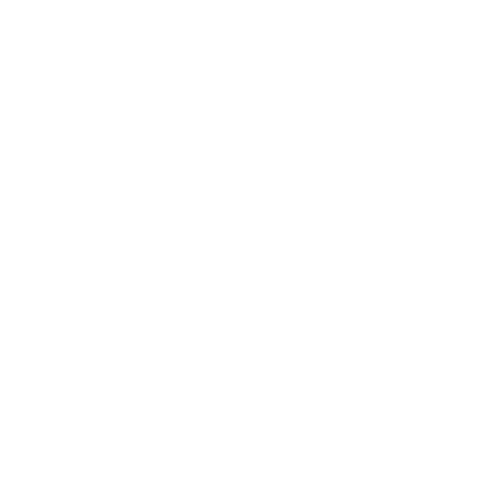 Recomendados LagoRapelChile.cl