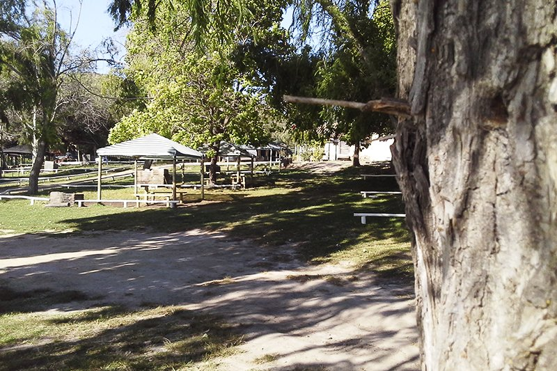 Fotografía de Camping Las Balsas