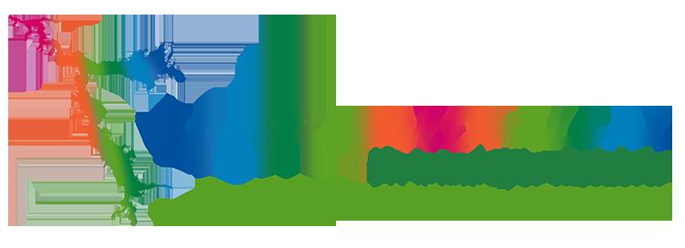 Plataforma LagoRapelChile.cl